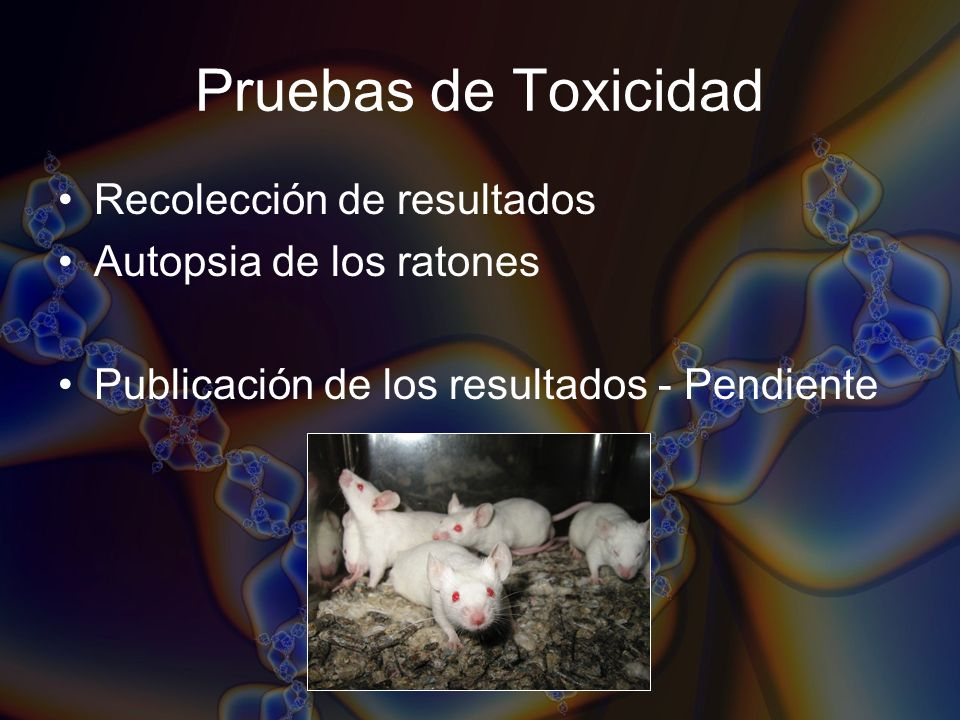 Pruebas de Toxicidad Recolección de resultados Autopsia de los ratones