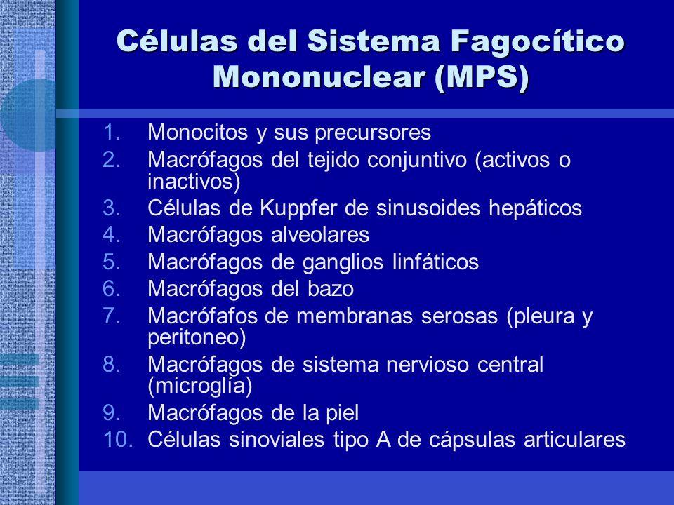 Células del Sistema Fagocítico Mononuclear (MPS)