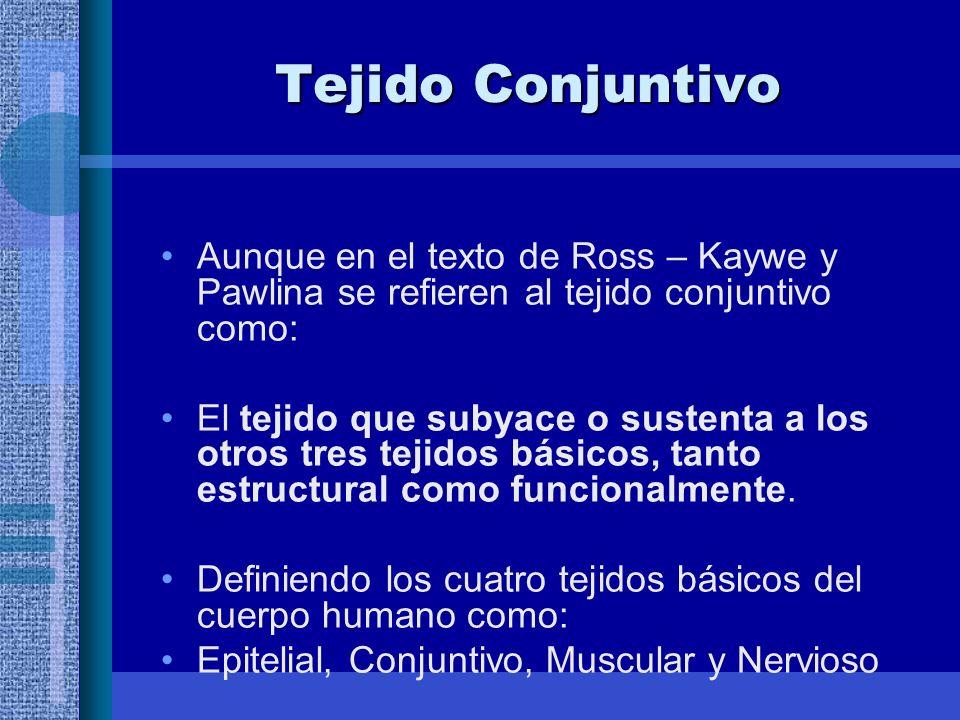 Tejido Conjuntivo Aunque en el texto de Ross – Kaywe y Pawlina se refieren al tejido conjuntivo como: