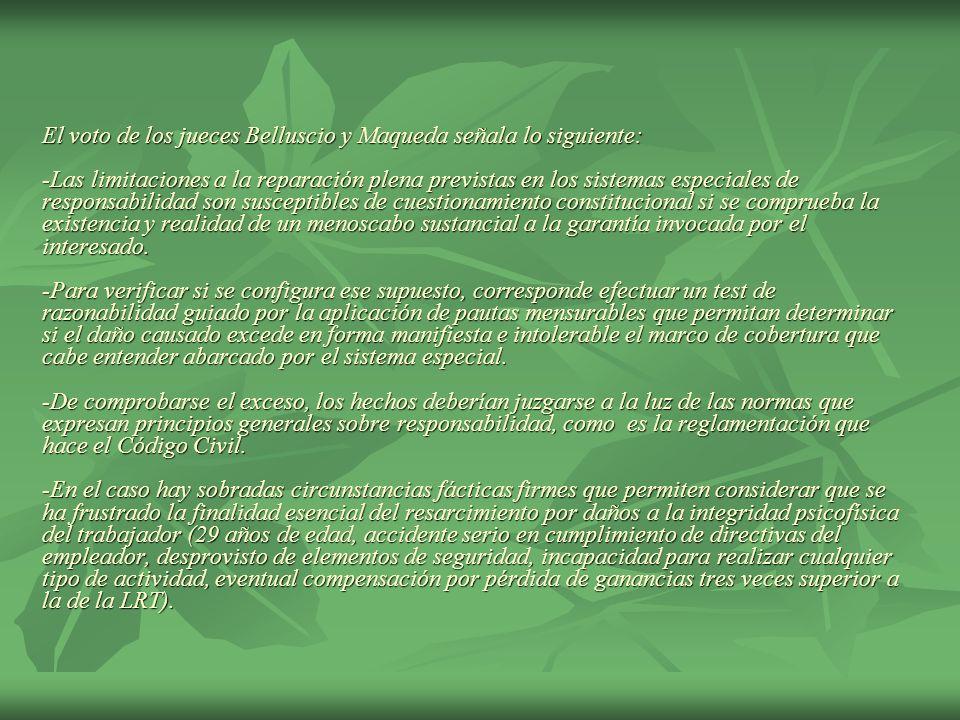 El voto de los jueces Belluscio y Maqueda señala lo siguiente: -Las limitaciones a la reparación plena previstas en los sistemas especiales de responsabilidad son susceptibles de cuestionamiento constitucional si se comprueba la existencia y realidad de un menoscabo sustancial a la garantía invocada por el interesado.