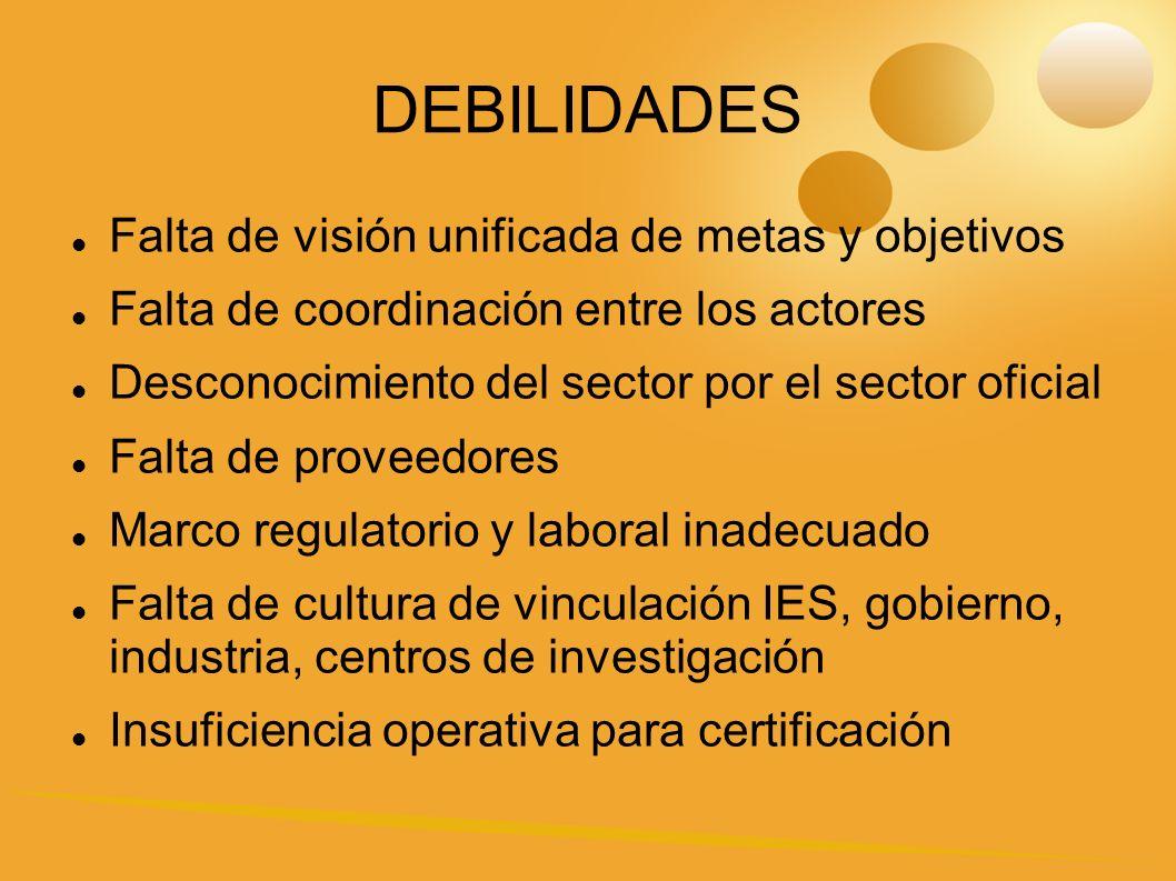 DEBILIDADES Falta de visión unificada de metas y objetivos