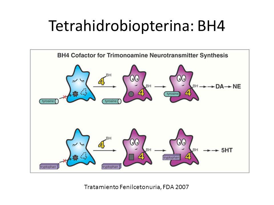 Tetrahidrobiopterina: BH4