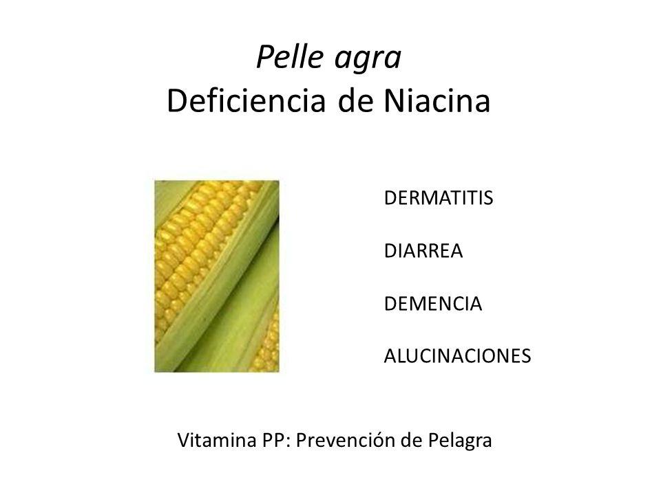 Pelle agra Deficiencia de Niacina