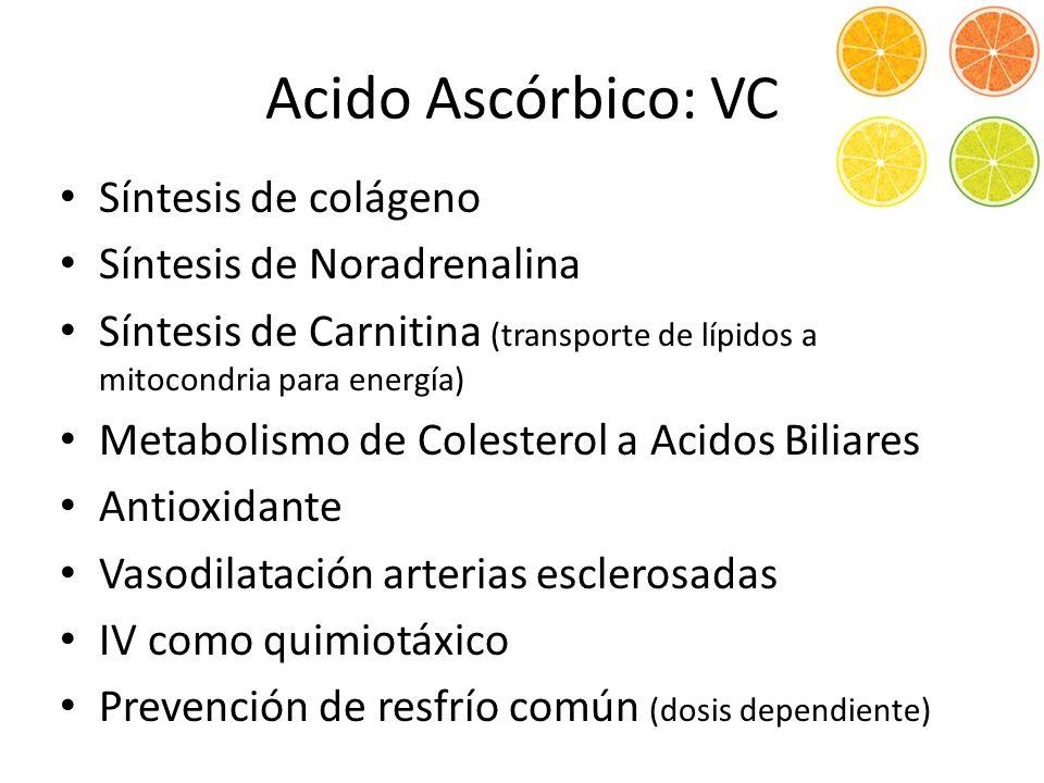 Acido Ascórbico: VC Síntesis de colágeno Síntesis de Noradrenalina
