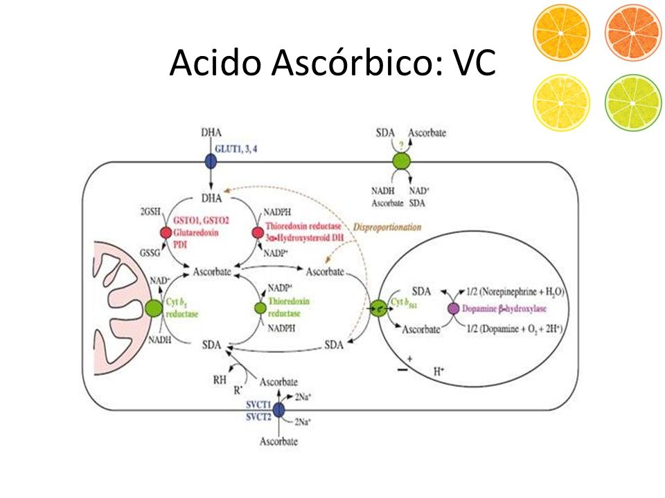 Acido Ascórbico: VC