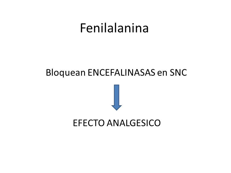 Fenilalanina Bloquean ENCEFALINASAS en SNC EFECTO ANALGESICO