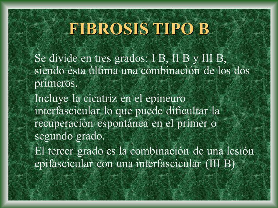 FIBROSIS TIPO B Se divide en tres grados: I B, II B y III B, siendo ésta última una combinación de los dos primeros.