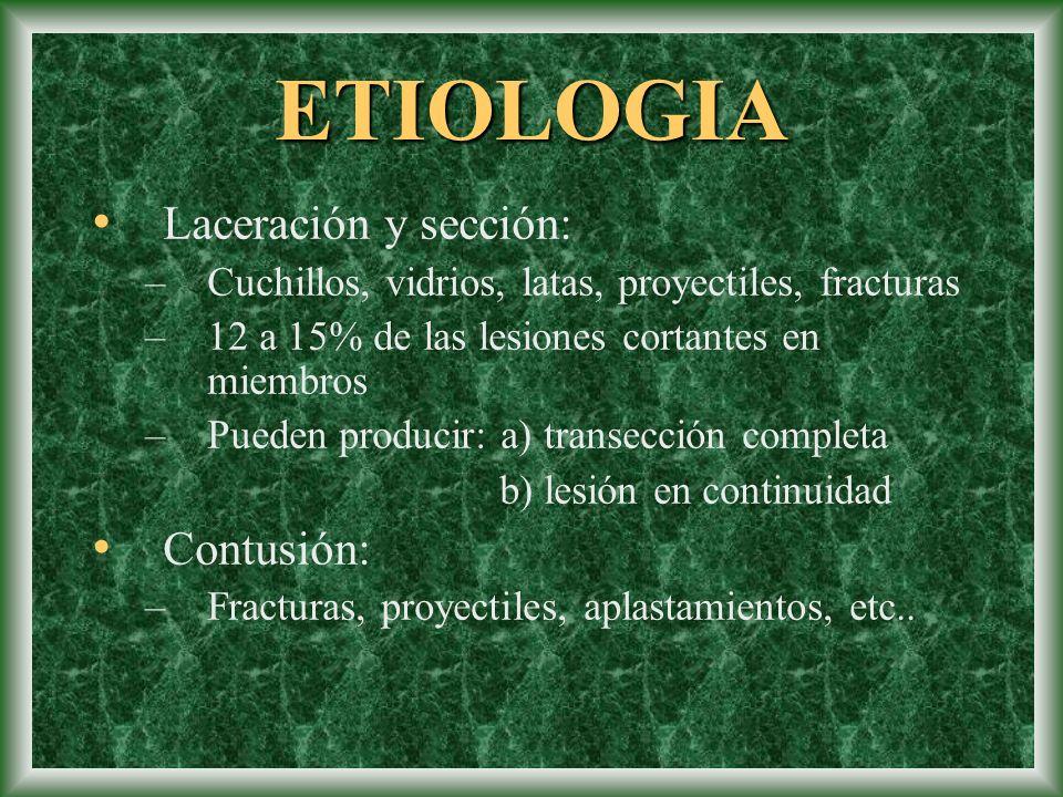 ETIOLOGIA Laceración y sección: Contusión: