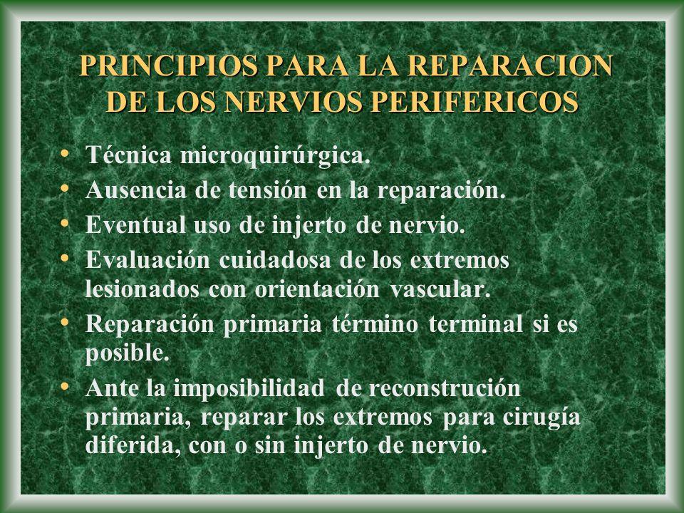 PRINCIPIOS PARA LA REPARACION DE LOS NERVIOS PERIFERICOS