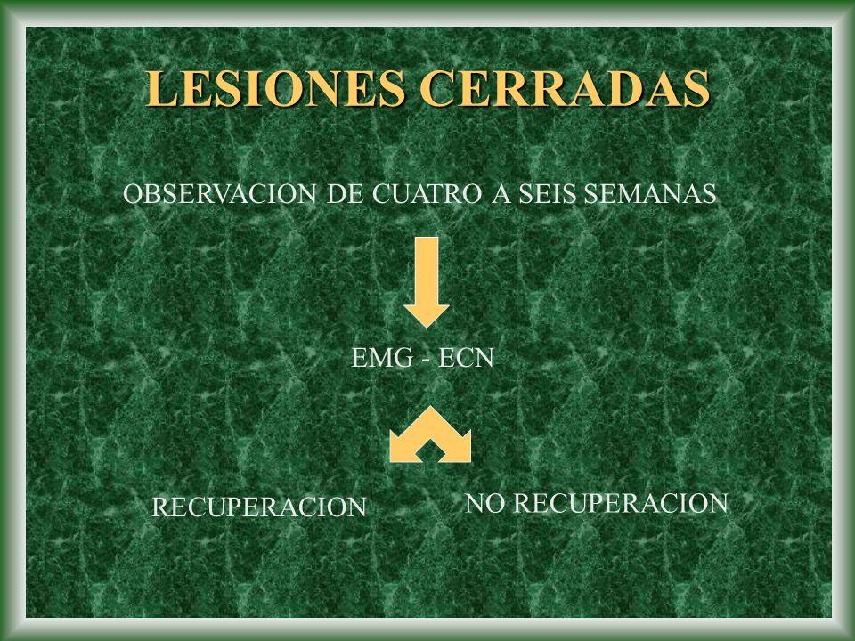 LESIONES CERRADAS OBSERVACION DE CUATRO A SEIS SEMANAS EMG - ECN
