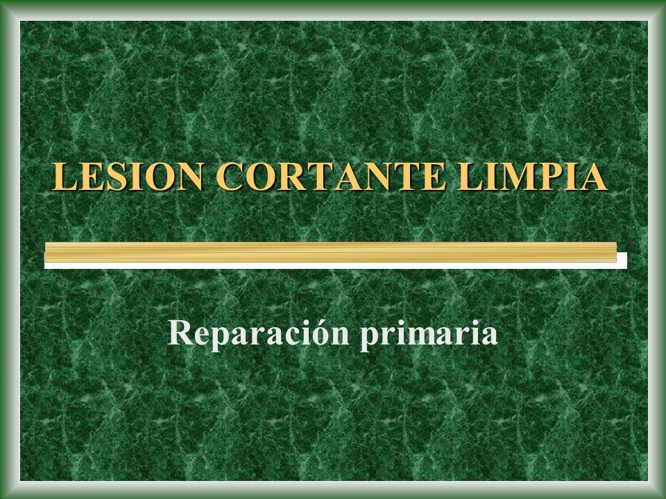 LESION CORTANTE LIMPIA