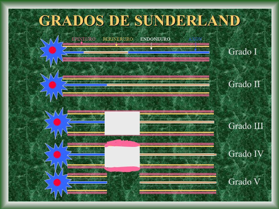GRADOS DE SUNDERLAND Grado I Grado II Grado III Grado IV Grado V