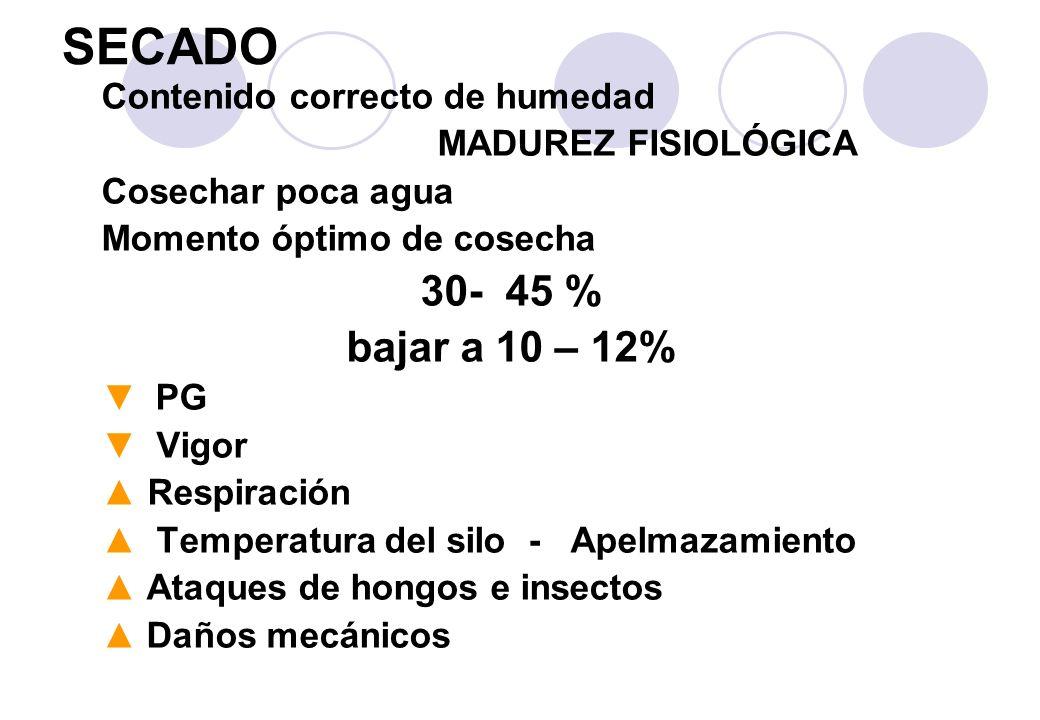 SECADO 30- 45 % bajar a 10 – 12% Contenido correcto de humedad
