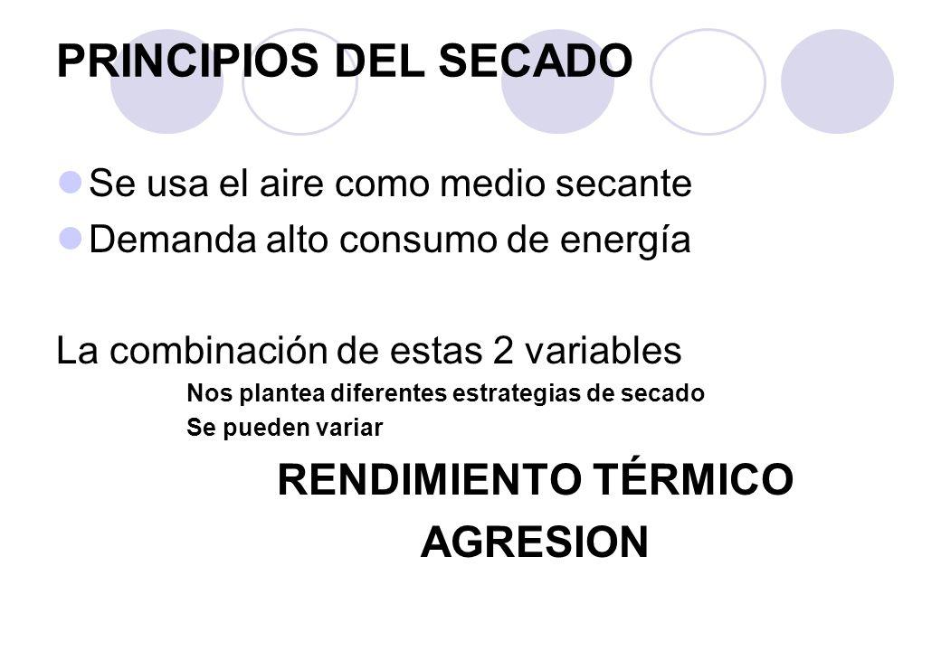 PRINCIPIOS DEL SECADO RENDIMIENTO TÉRMICO AGRESION