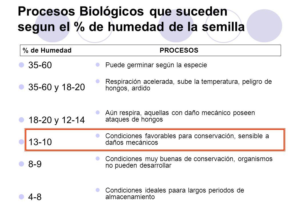 Procesos Biológicos que suceden segun el % de humedad de la semilla