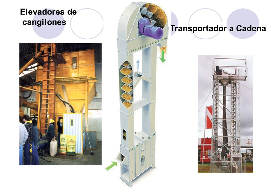 Elevadores de cangilones Transportador a Cadena