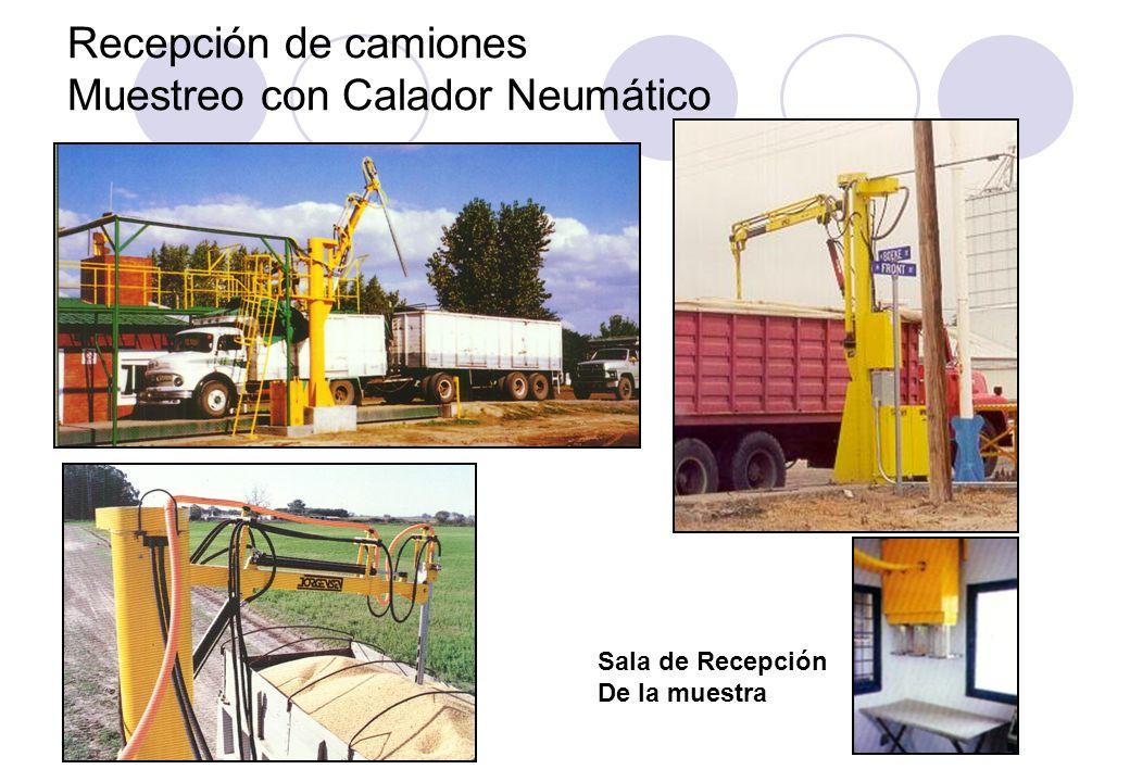 Recepción de camiones Muestreo con Calador Neumático