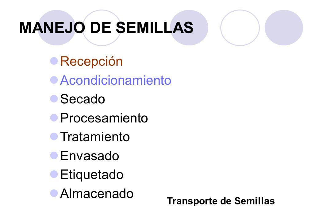 MANEJO DE SEMILLAS Recepción Acondicionamiento Secado Procesamiento