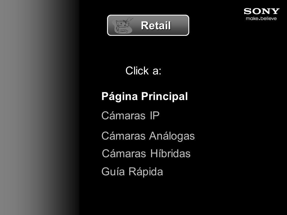 Retail Click a: Página Principal Cámaras IP Cámaras Análogas