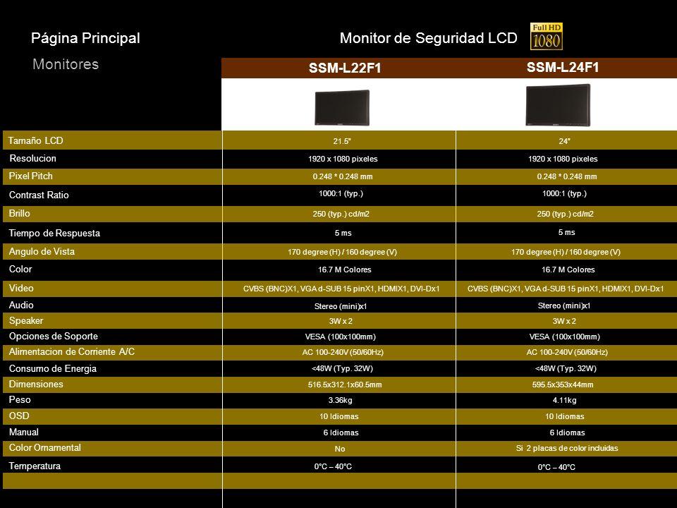 Monitor de Seguridad LCD