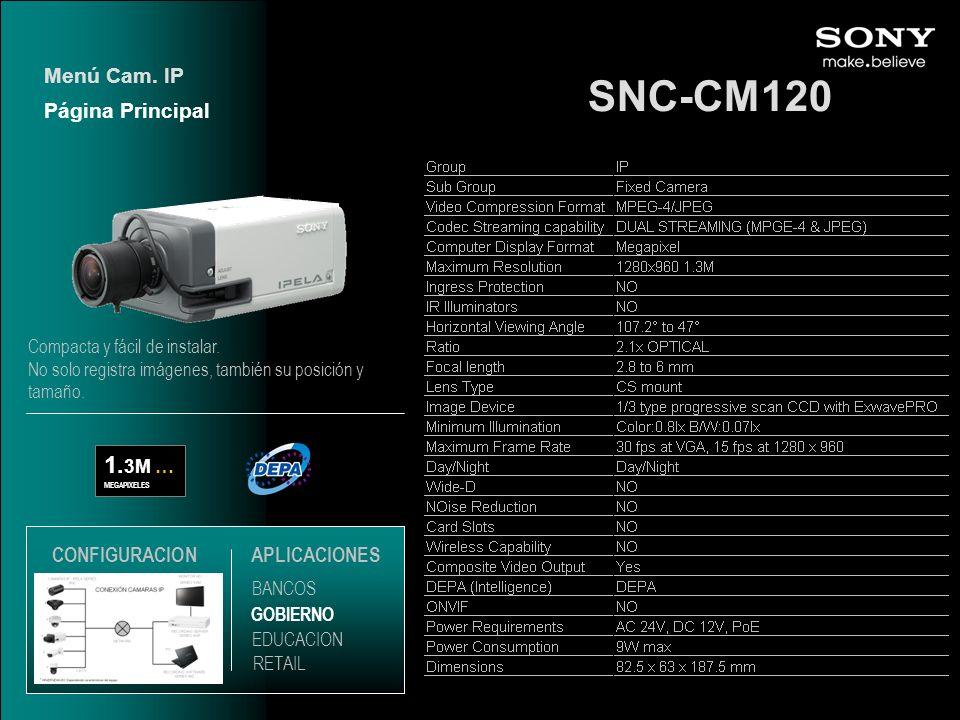 SNC-CM120 1.3M … Menú Cam. IP Página Principal CONFIGURACION