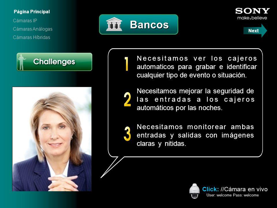 Página Principal Cámaras IP. Bancos. Cámaras Análogas. Next. Cámaras Híbridas. Click: //Cámara en vivo.