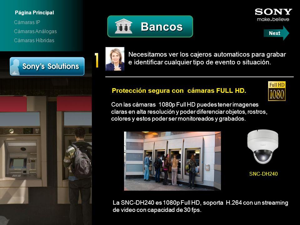 Página Principal Cámaras IP. Bancos. Cámaras Análogas. Next. Cámaras Híbridas. SNC-DH240.