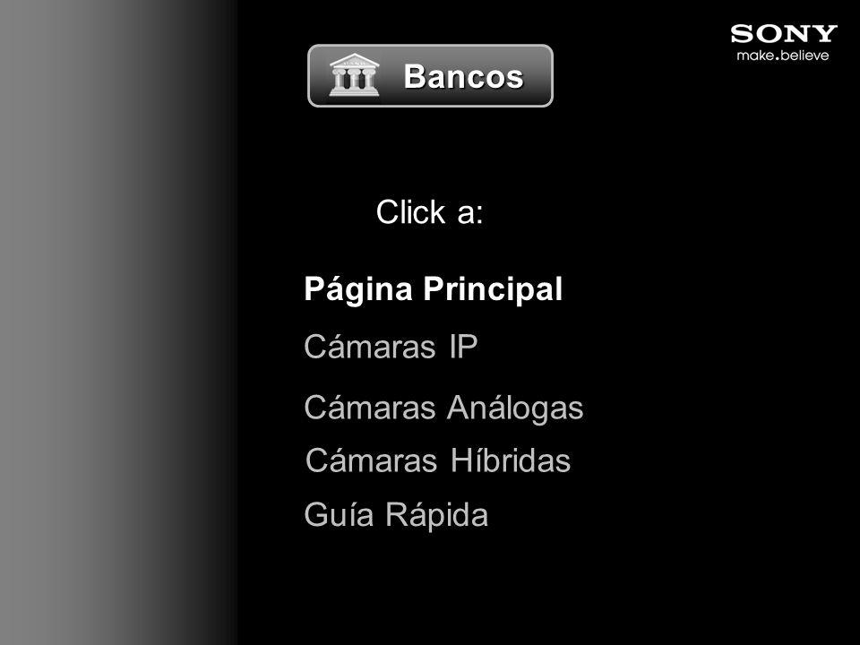 Bancos Click a: Página Principal Cámaras IP Cámaras Análogas