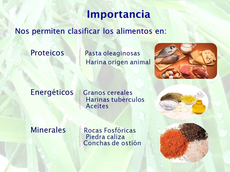 Importancia Nos permiten clasificar los alimentos en: