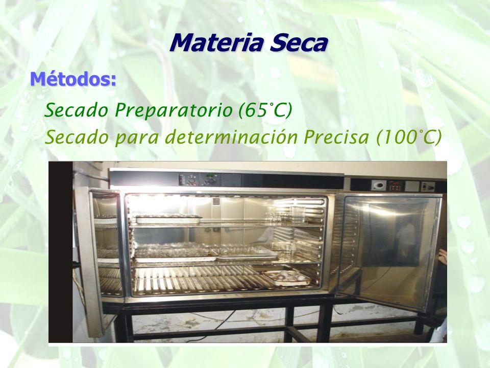 Materia Seca Métodos: Secado Preparatorio (65°C)