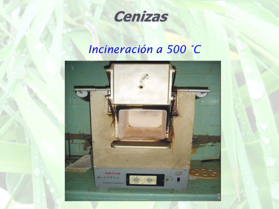 Cenizas Incineración a 500 °C