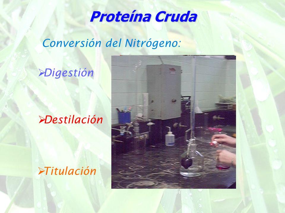 Conversión del Nitrógeno: