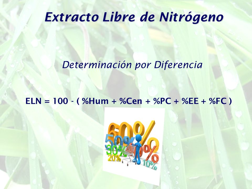 Extracto Libre de Nitrógeno