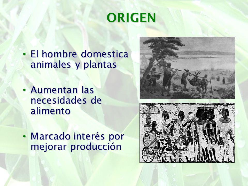 ORIGEN El hombre domestica animales y plantas