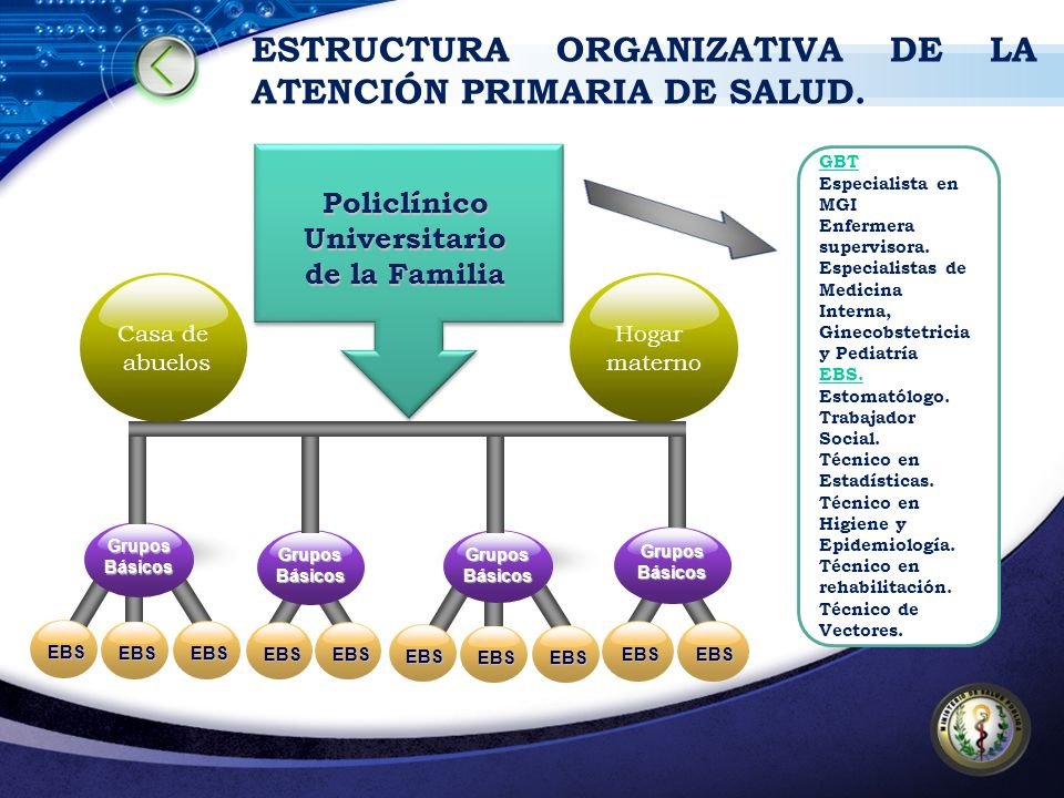 ESTRUCTURA ORGANIZATIVA DE LA ATENCIÓN PRIMARIA DE SALUD.