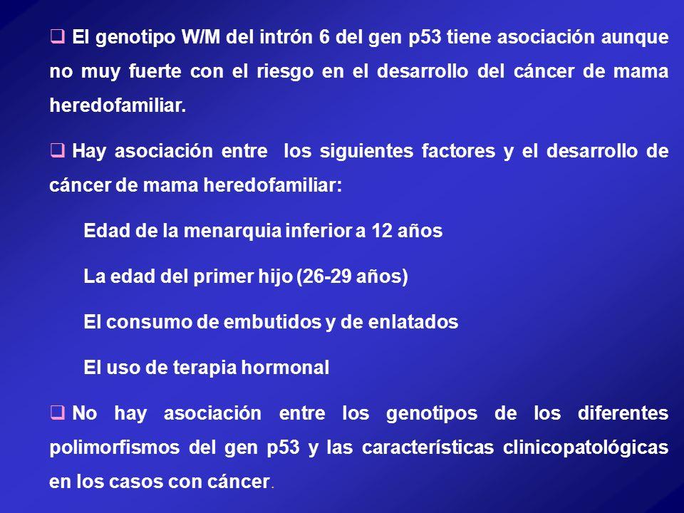 El genotipo W/M del intrón 6 del gen p53 tiene asociación aunque no muy fuerte con el riesgo en el desarrollo del cáncer de mama heredofamiliar.