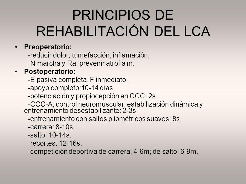 PRINCIPIOS DE REHABILITACIÓN DEL LCA