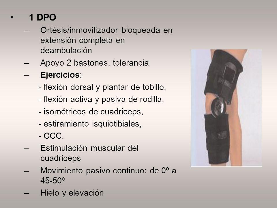 1 DPO Ortésis/inmovilizador bloqueada en extensión completa en deambulación. Apoyo 2 bastones, tolerancia.