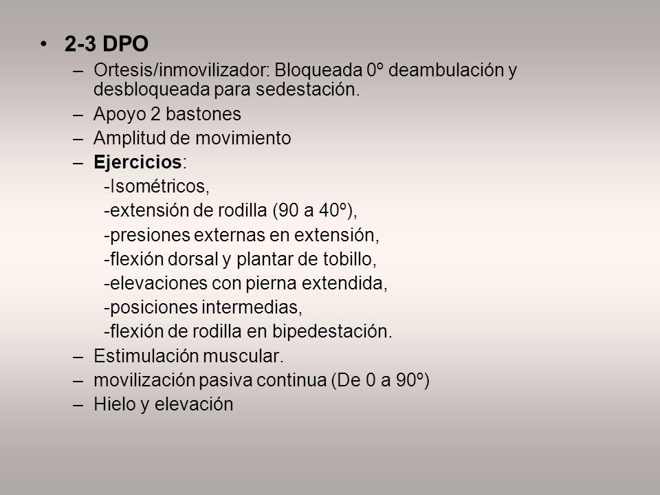 2-3 DPO Ortesis/inmovilizador: Bloqueada 0º deambulación y desbloqueada para sedestación. Apoyo 2 bastones.