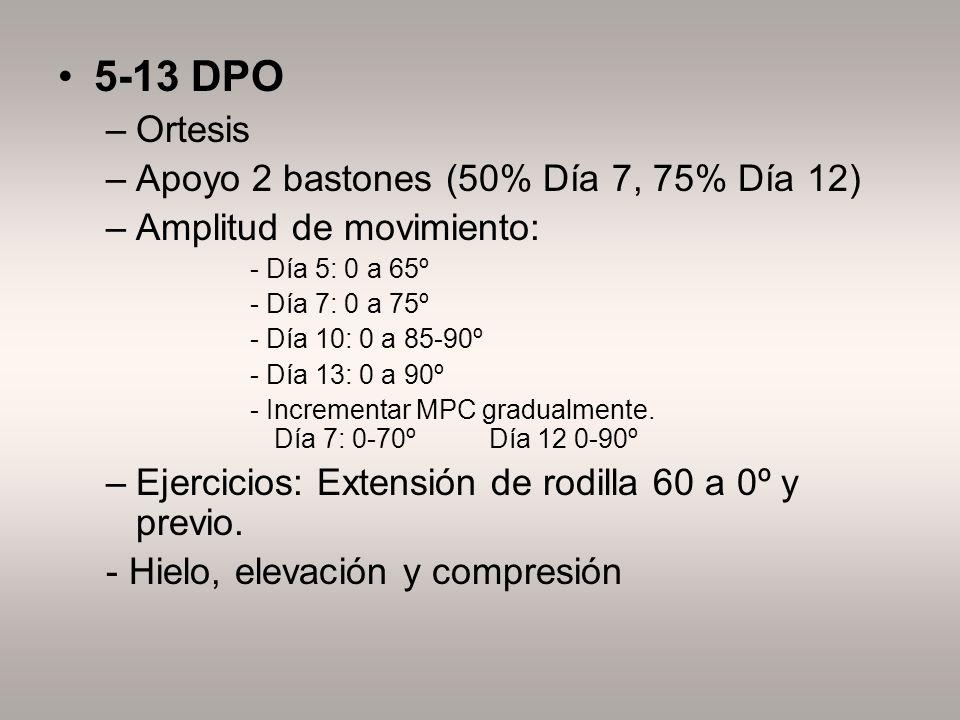 5-13 DPO Ortesis Apoyo 2 bastones (50% Día 7, 75% Día 12)