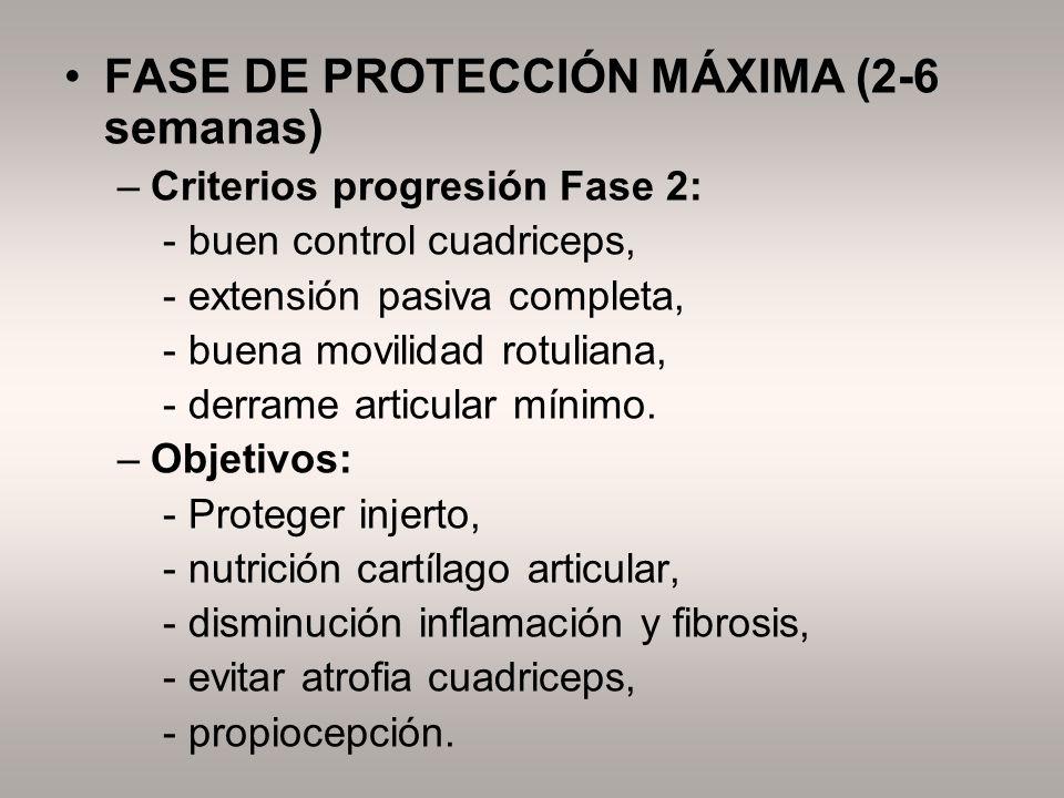 FASE DE PROTECCIÓN MÁXIMA (2-6 semanas)