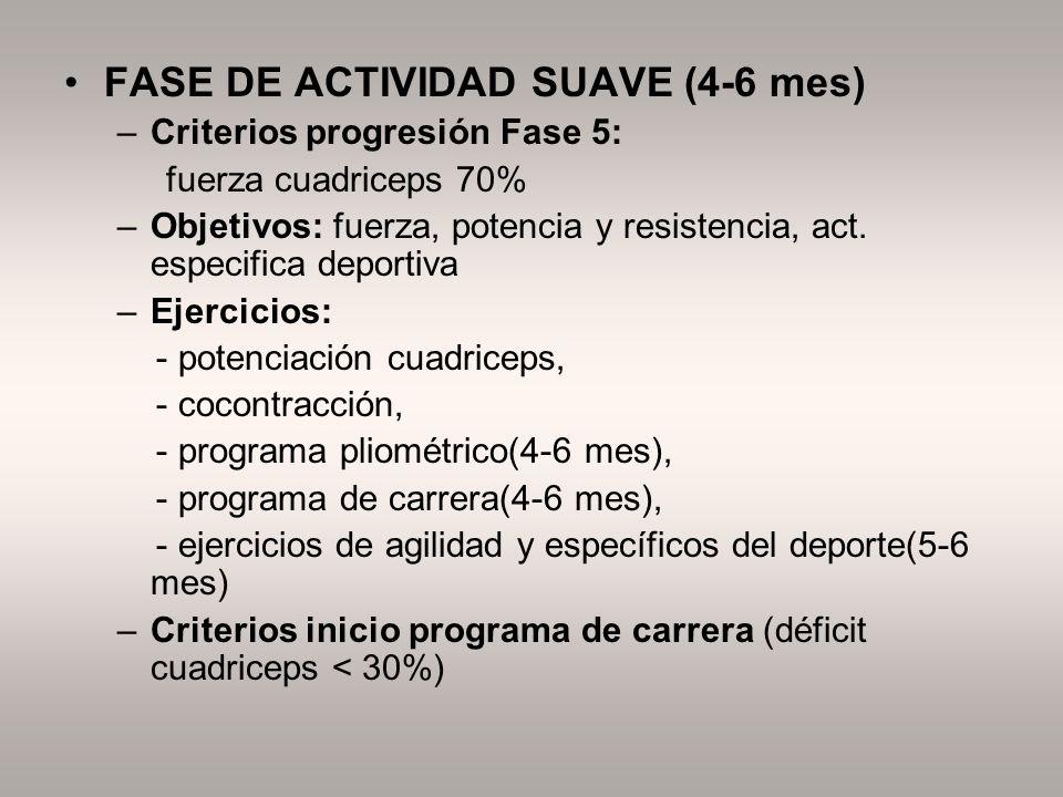 FASE DE ACTIVIDAD SUAVE (4-6 mes)