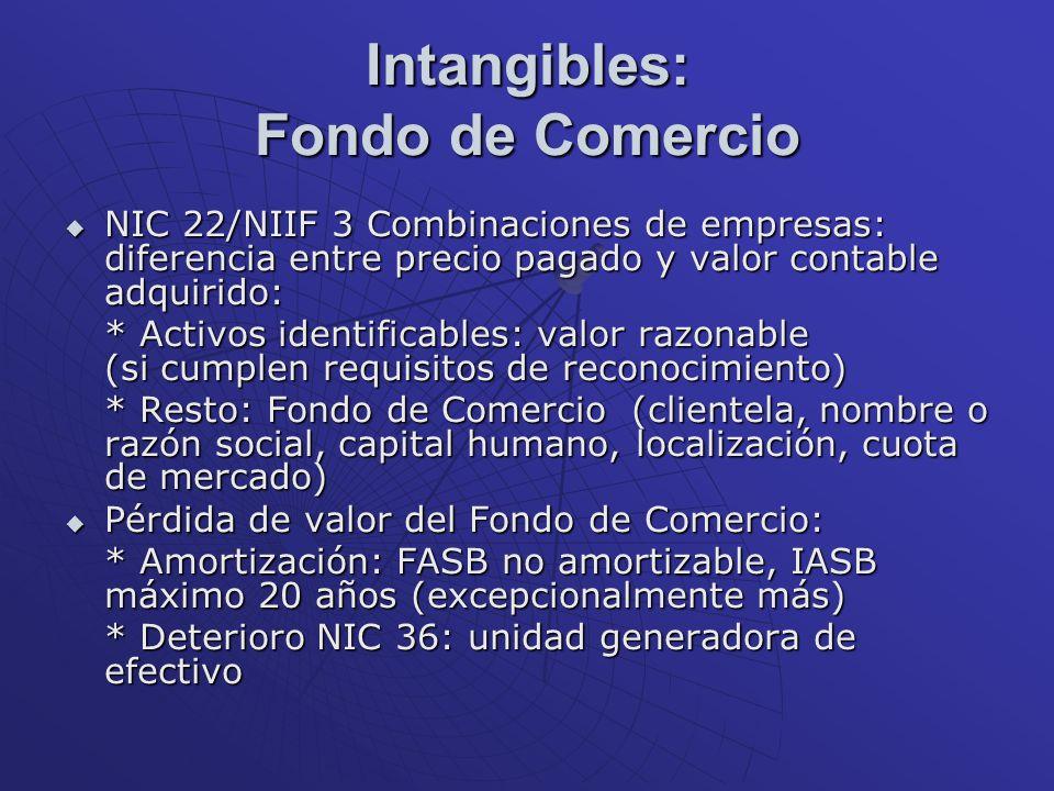 Intangibles: Fondo de Comercio