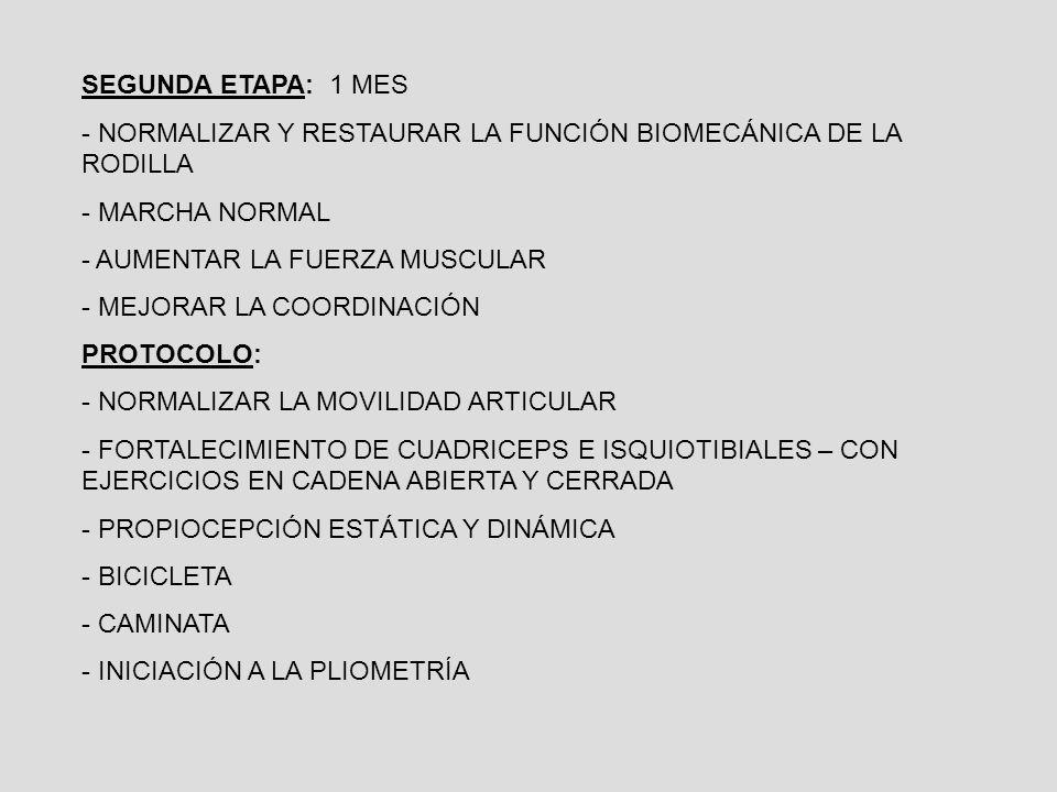 SEGUNDA ETAPA: 1 MES NORMALIZAR Y RESTAURAR LA FUNCIÓN BIOMECÁNICA DE LA RODILLA. MARCHA NORMAL. AUMENTAR LA FUERZA MUSCULAR.