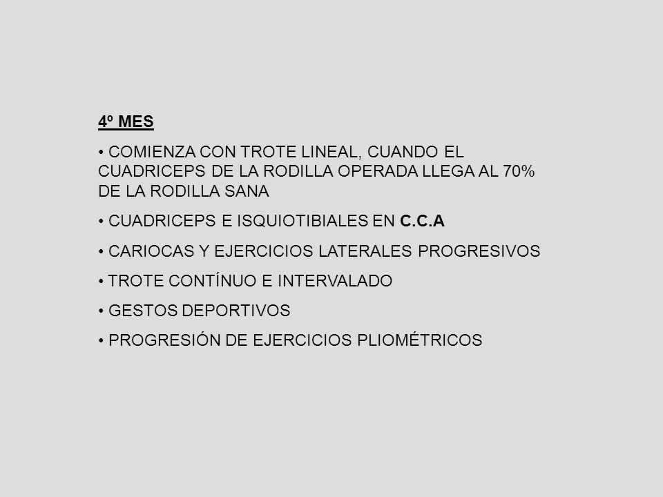 4º MES COMIENZA CON TROTE LINEAL, CUANDO EL CUADRICEPS DE LA RODILLA OPERADA LLEGA AL 70% DE LA RODILLA SANA.
