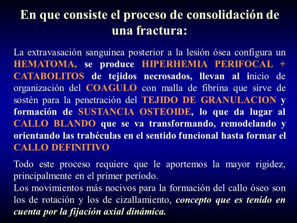 En que consiste el proceso de consolidación de una fractura: