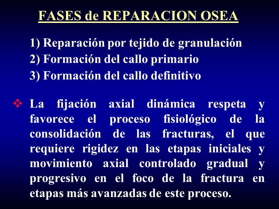 FASES de REPARACION OSEA
