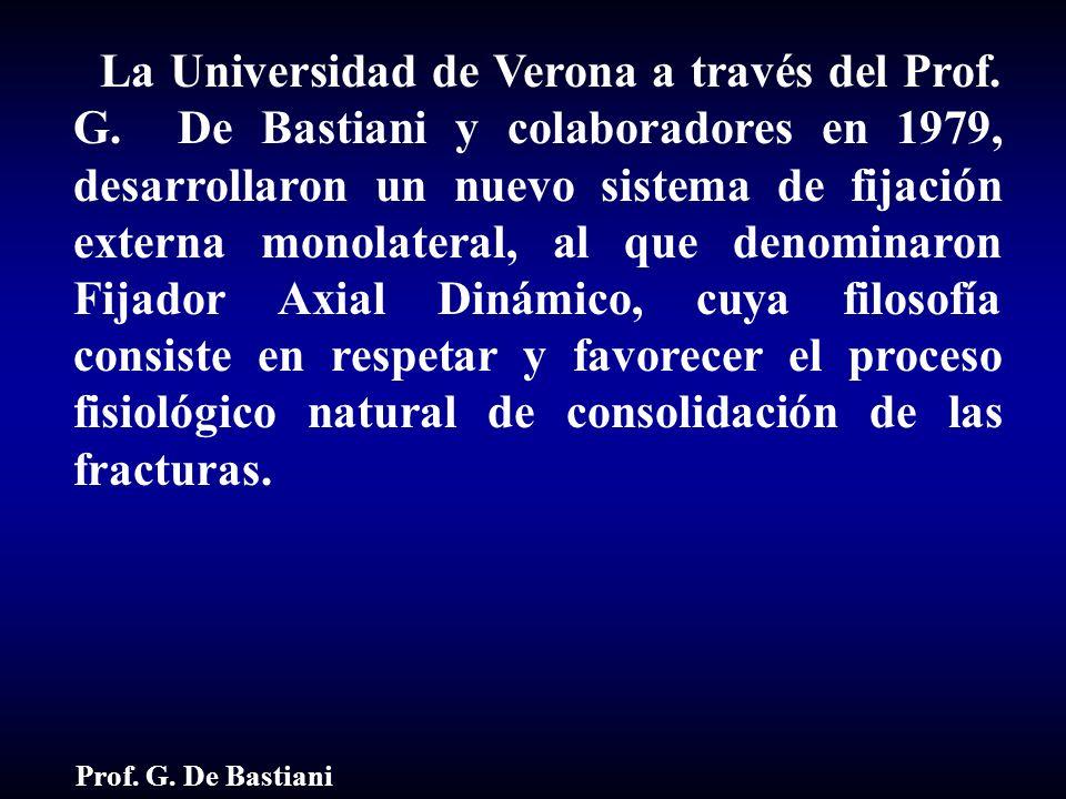 La Universidad de Verona a través del Prof. G