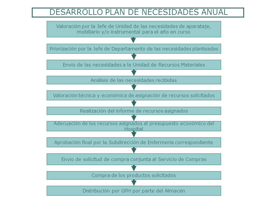 DESARROLLO PLAN DE NECESIDADES ANUAL