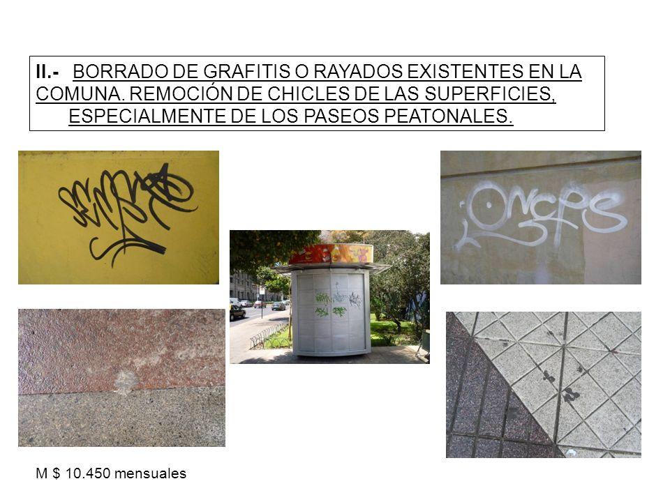 II.- BORRADO DE GRAFITIS O RAYADOS EXISTENTES EN LA